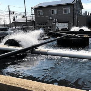 水産会社の画像