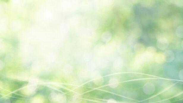 涼しげな緑の画像