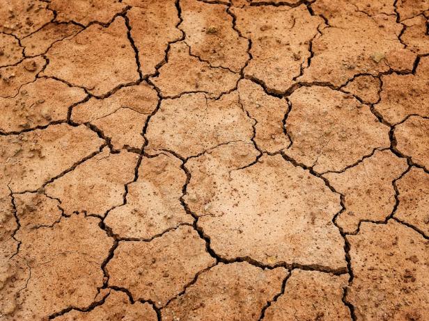 干ばつによりひび割れた地面