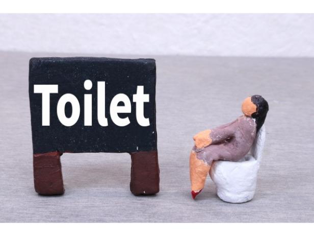 トイレに座って考える人