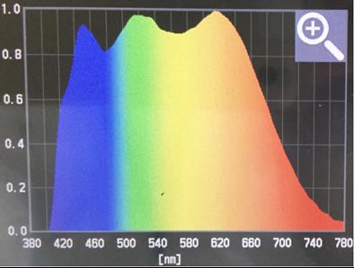 「明王」の発光スペクトル